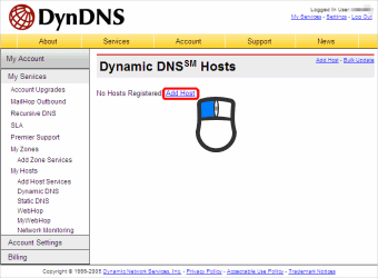 Dynamic DNS Hosts