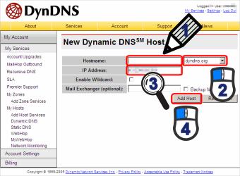 Dynamic DNS Host